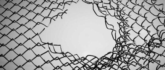 Meritocrazia: mito o realtà?