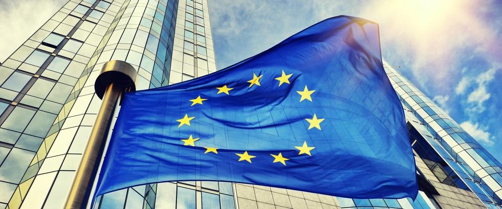 """Identità comune e istituzioni liberaldemocratiche: obiettivi raggiungibili per l'Ue?"""""""